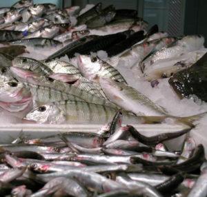 pesce reparto pescheria